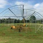 greenlife structures 10 metre sawtooth greenhouse