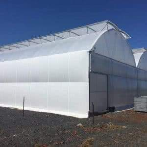 greenlife structures 10 metre gullwing greenhouse