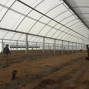 greenlife structures multi-span greenhouse