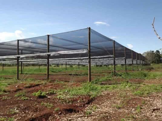 greenlife structures greenhouse netting structure