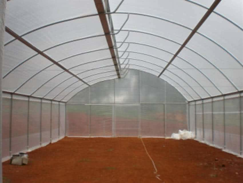 greenlife structures 10m greenhouse insect screen