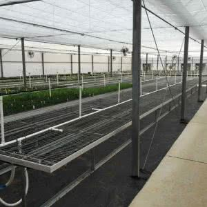 greenhouse structures multi-span greenhouse
